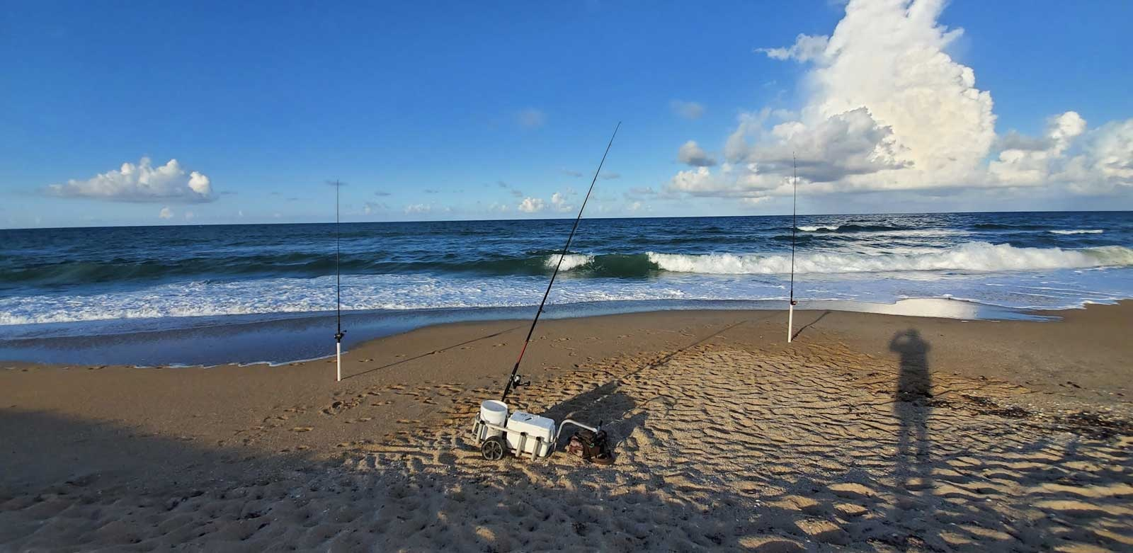new smyrna beach surf fishing report